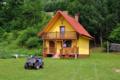 Domek z kominkiem w Górzance
