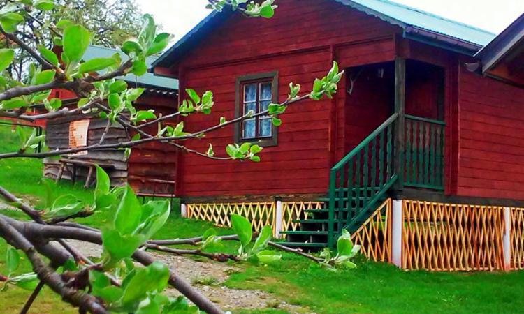 Pokoje i domki w Bukowcu